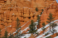 Red Canyon0413458