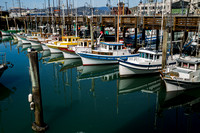 San Francisco, Fishermans Wharf, Marina130-7061