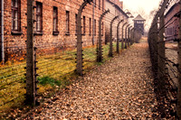 Auschwitz, Concentration Camp S -8522