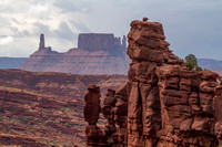 Moab, Fisher Towers Tr131-6858