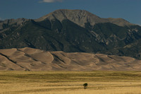 Great Sand Dunes NP0739025a