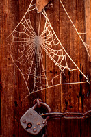 Binsfeld, Frozen Spider Web and Lock S V-4152