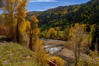 San Juan Skyway, Dolores R Valley, Fall Foliage131-8395
