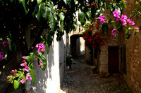 St Paul Vence, Alley1032171