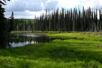 Chena Hot Springs Rd, Chena River RA089999a