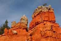 Red Canyon0413465