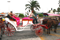 Sousse, Horse and Cart1026482a
