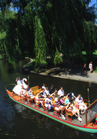 Boston Common, Swan Boat V