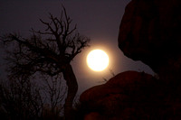 Arches NP, Moon0746817