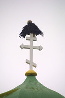 Unalaska, Cross, Eagle020603-0410