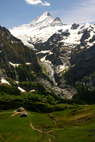 Grindelwald Valley, f First V0942256