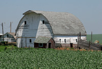 Northeast NE, Barn0576597a