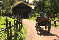 Oslo, Norsk Folkemuseum, Horse, Cart1044097a