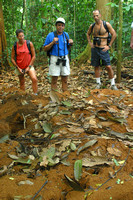 Corcovado NP, Leafeater Ant Colony, V040123-9477a