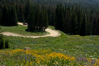 Beartooth Pass, Fire Tower Rd0825714