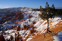 Bryce Canyon NP, Sunrise Point0749175
