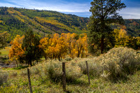 San Juan Skyway, Dolores R Valley, Fall Foliage131-8391