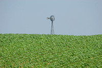 Northeast NE, Windmill0576604a