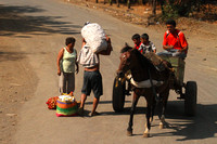 Nicaragua, Village, Horse and Cart1116222a