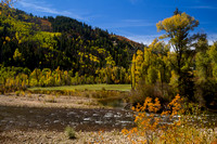 San Juan Skyway, Dolores R Valley, Fall Foliage131-8383