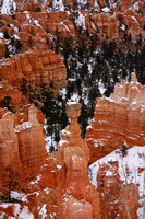 Bryce Canyon NP, Thors Hammer V0749001a