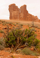 Arches NP V0827974a