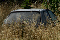 Tortoli, Sardinia, Car in Grass1028340