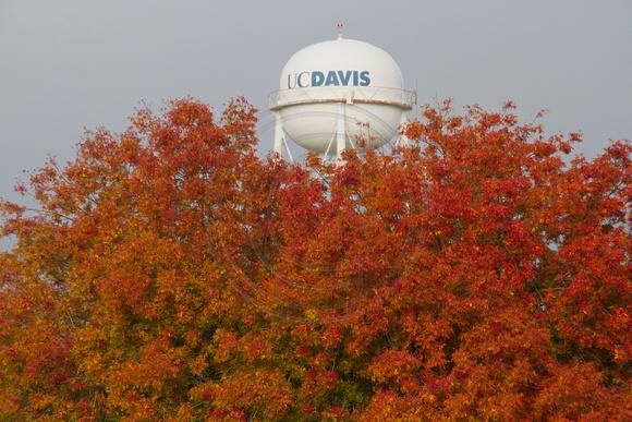Davis Water Tower uc Davis Water Tower