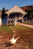 Lancaster, Lancaster Covered Bridge S V-2883