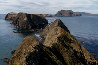Channel Islands NP, Anacapa Is, Inspiration Pt140-9372