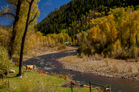 San Juan Skyway, Dolores R Valley, Fall Foliage131-8370
